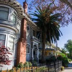 San Jose Brownstone with Palm Trees in front