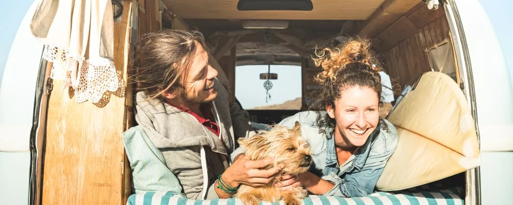 Couple sitting in the back of a van with a dog.