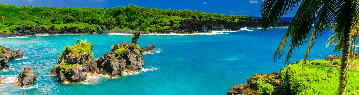 Bright blue water in Hawaii on a clear day.