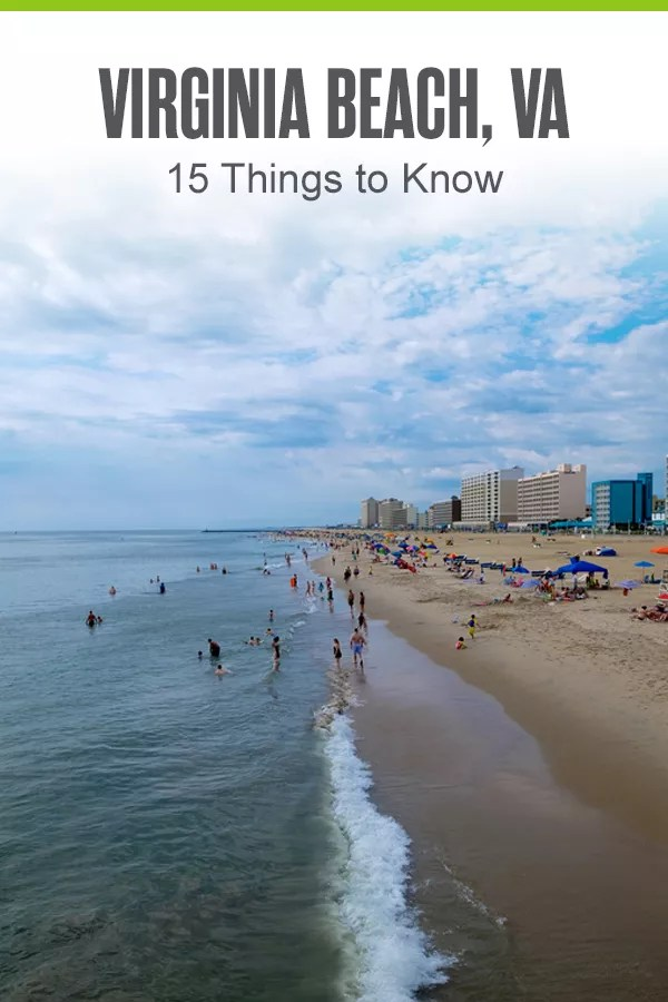 Relocating to Virginia Beach? This coastal city has some of the best seafood, museums, and beaches in the country! Here are 15 things to know about Virginia Beach! via @extraspace