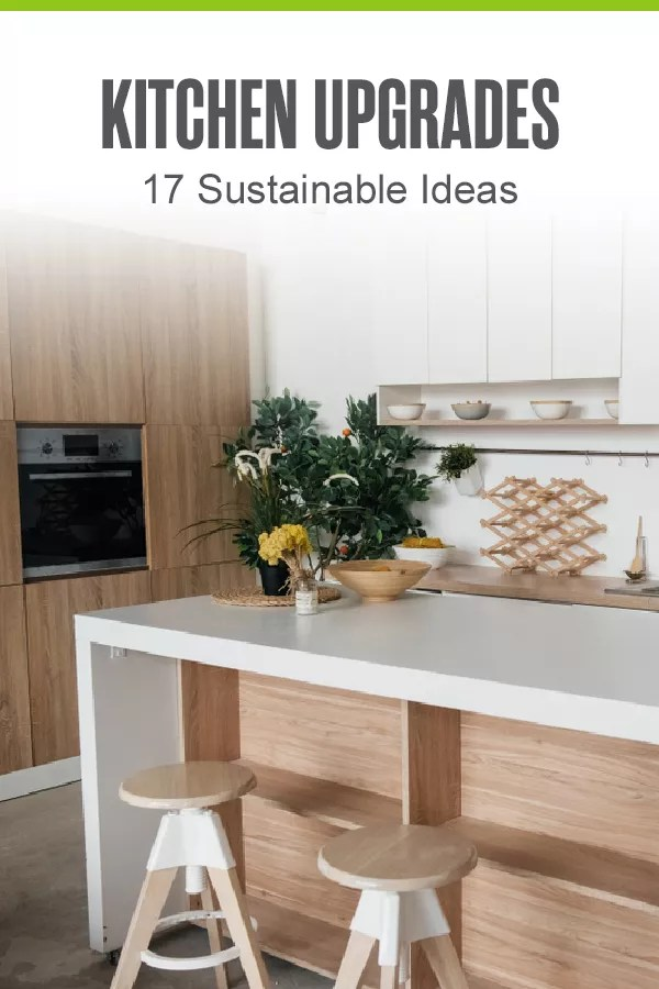 Looking to create a more sustainable kitchen? By using eco-friendly materials and energy-saving appliances, you can create your dream kitchen while also protecting the environment! via @extraspace