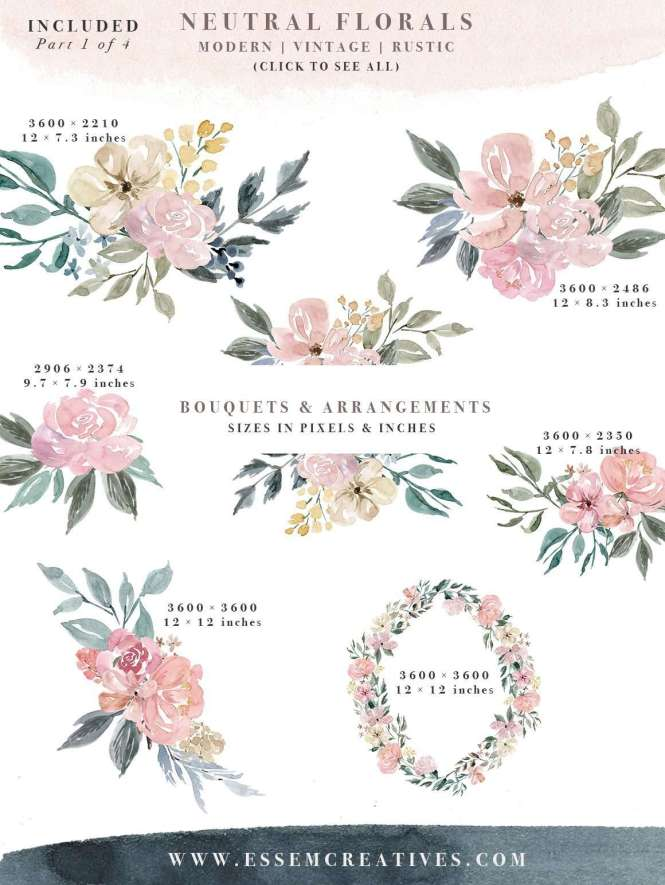 Neutral Watercolor Flowers Clipart Fl Borders Frames For Wedding