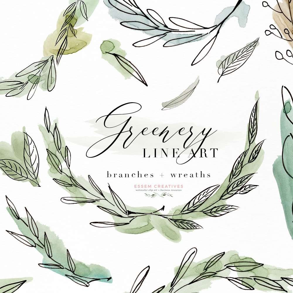 medium resolution of greenery line art watercolor clipart olive eucalyptus branches tropical fine art botanical ink graphics