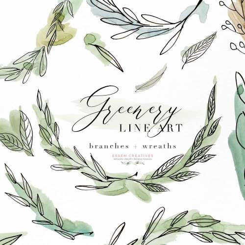 small resolution of greenery line art watercolor clipart olive eucalyptus branches tropical fine art botanical ink graphics