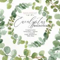 Watercolor Eucalyptus Wreath Branches Clipart PNG