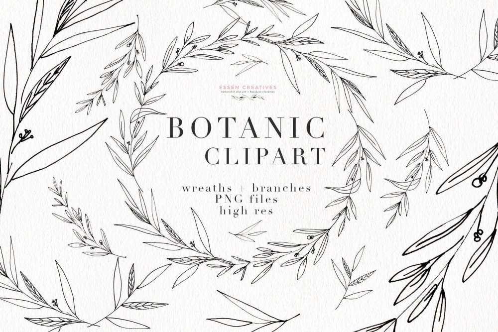 medium resolution of botanical clipart botanical illustrations greenery wedding invitation templates eucalyptus branches olive branch