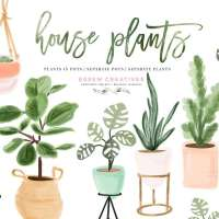 Watercolor House Plant Clip Art, Indoor Plants Potted Plant Graphics Clipart Illustrations, Cactus Succulents Urban Garden