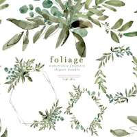 Watercolor Eucalyptus Clipart, Greenery Foliage  Green Leaf Leaves Laurel Wreath Frames Borders