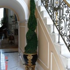 Potomac-MD-interior-designer-Shiva-Rostami-foyer-McLean-VA-traditional-freeze-dried-topiary