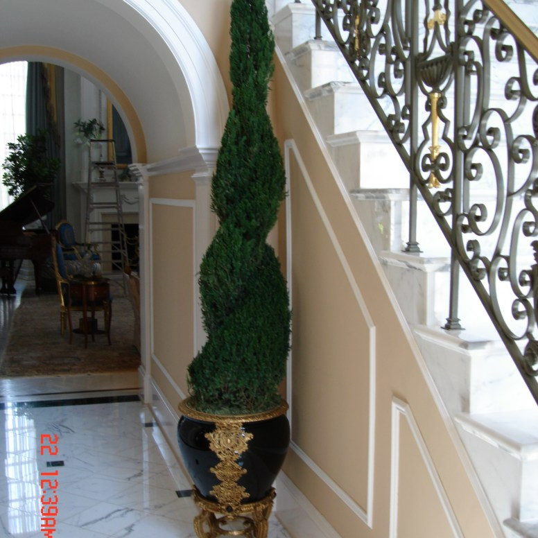 Potomac-MD-interior-designer-Shiva-Rostami-foyer-McLean-VA-traditional-freeze-dried-topiary