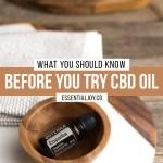 Better Than Cbd Oil Cannabis Vs Copaiba Essential Joy