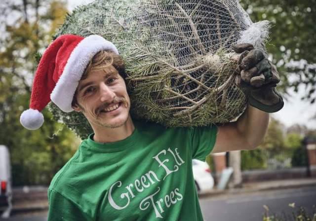 https://www.greenelftrees.co.uk/