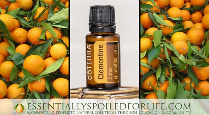 Clementine Essential Oil