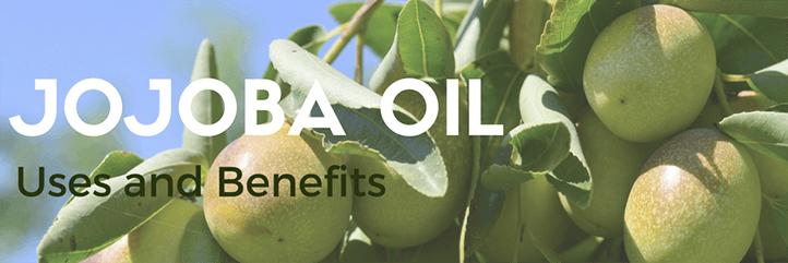 The top jojoba oil uses including jojoba oil for skin and jojoba oil for hair growth.