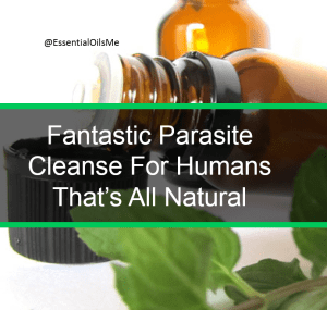 Parasite Cleanse For Humans