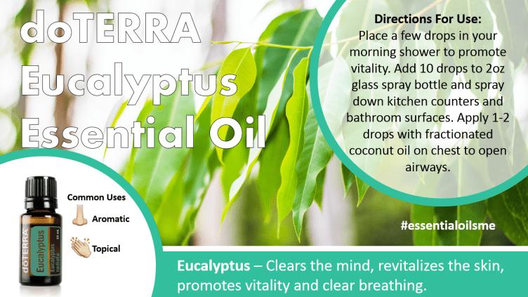 doterra eucalyptus essential oil