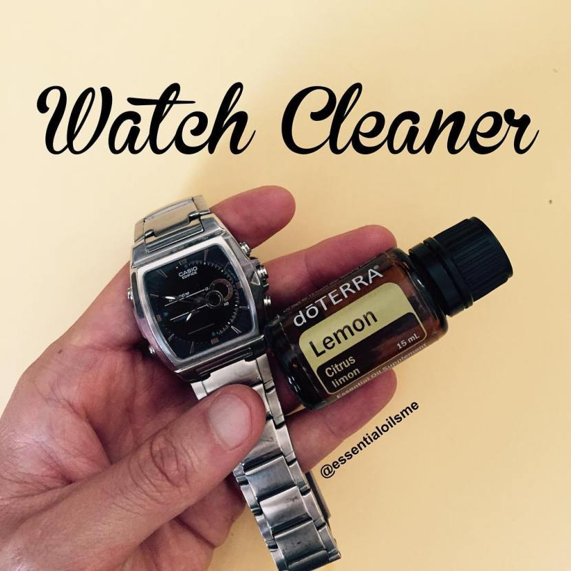 stainless steel watch cleaner