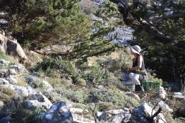 Janina Sorensen in harmony with nature