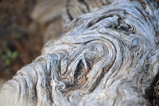 Cypress. Layers.