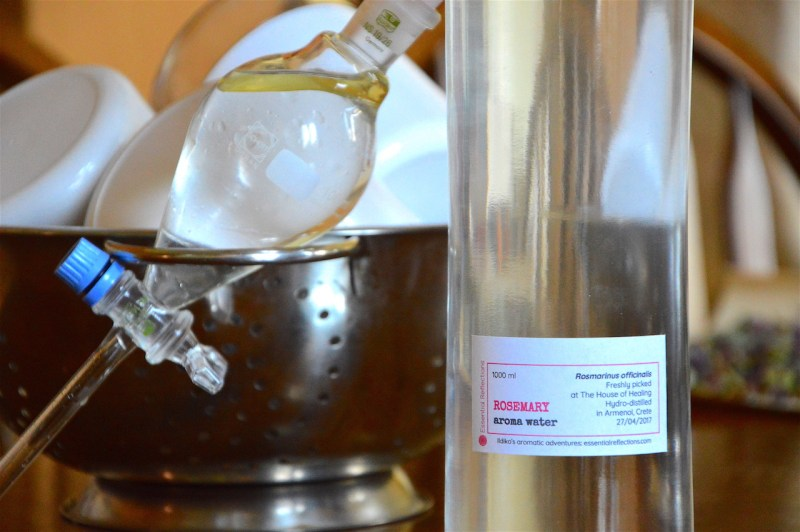 Essential oil and hydrosol from distilling fresh rosemary, April 2017