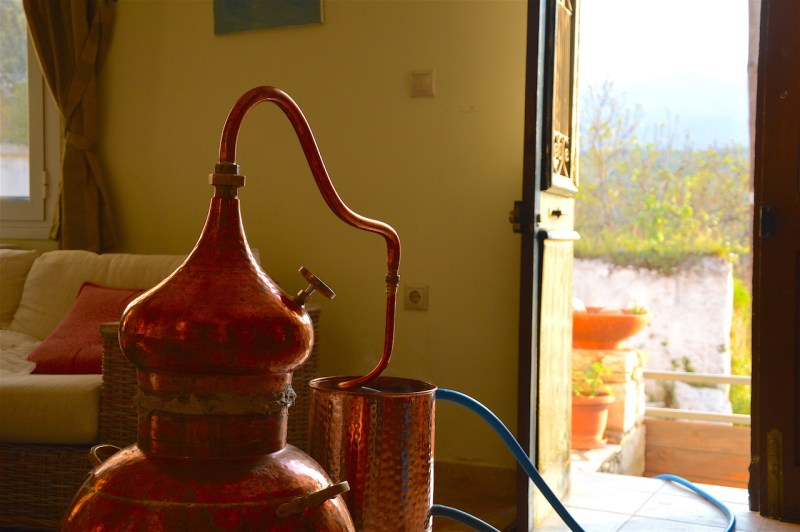 Sage distillation in progress at sunset on Crete, April 2017