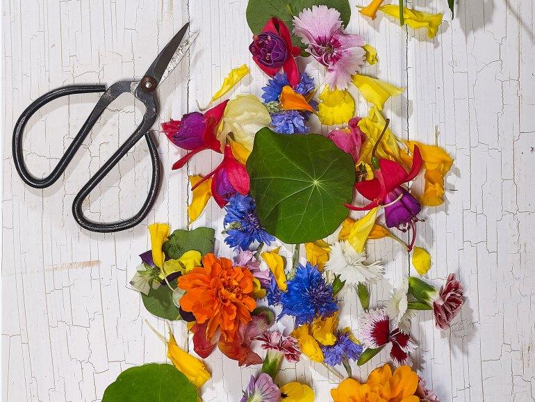 Flowerdale Farm's Edible Blooms