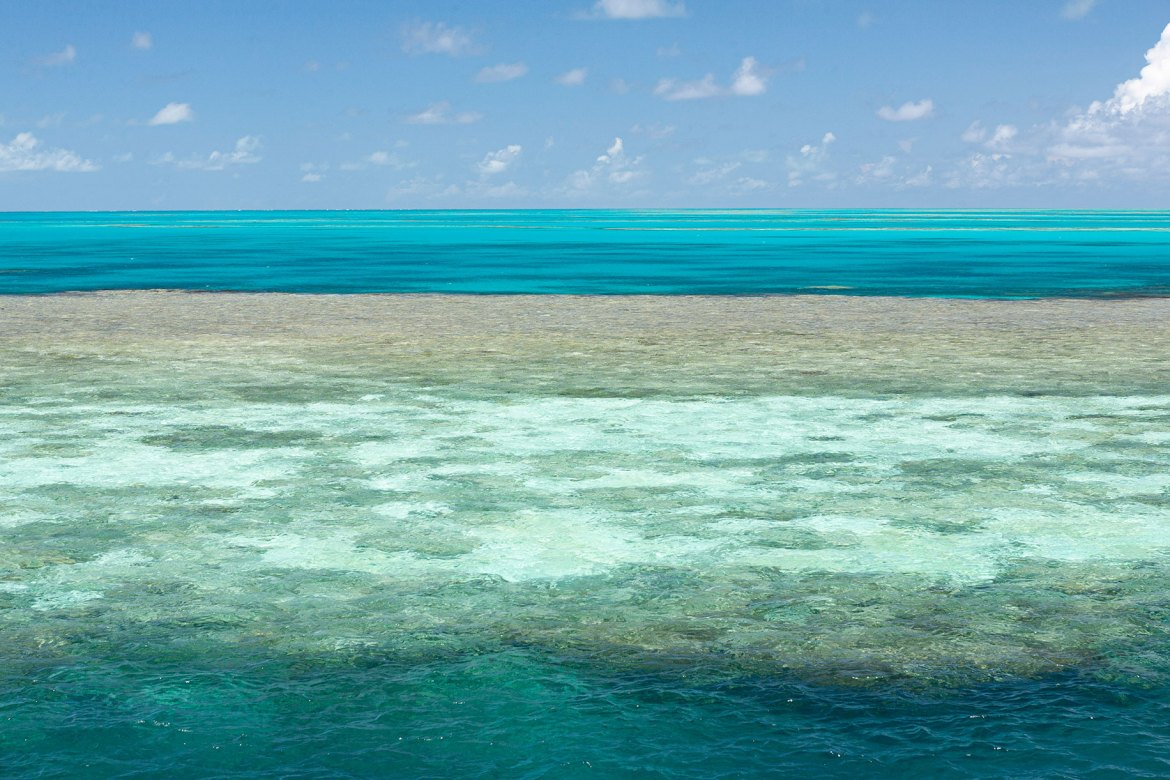 Great Barrier Reef - Up close and personal