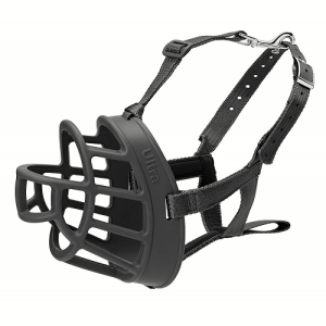 Other dog training tools and accessories.