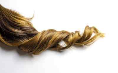 Cheveux déshydratés ou en manque de nutrition ?