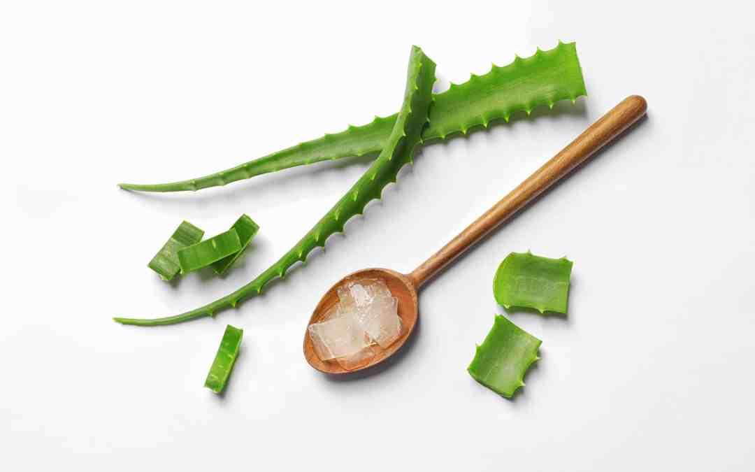 Comment reconnaître un bon gel d'aloe vera ?