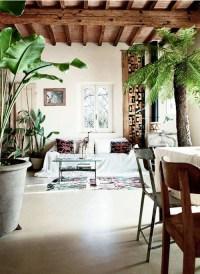Green Extravaganza: Plants In Home Decor