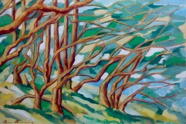 Alberi - olio su tela - cm. 70 x 50