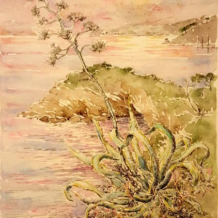L'agave - acquaforte originale su lastra di rame acquerellata - cm. 14,5 x 21,5