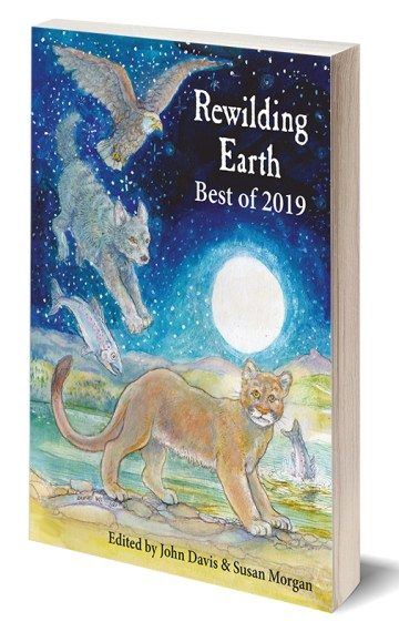 Rewilding Earth: Best of 2019