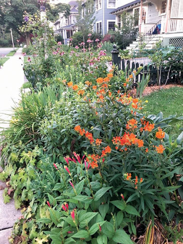Maplewood Garden Club's annual plant sale goes online