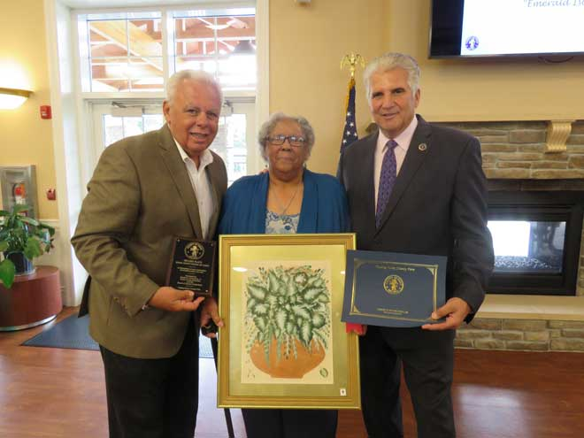 County recognizes 27 senior citizens for their artistic talent