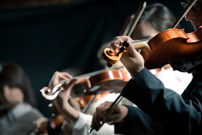 MAPSO String Ensemble to perform for your delight Nov. 17