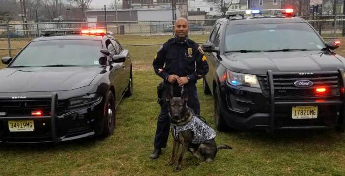 Orange Police K9 Hulk receives a donation of body armor