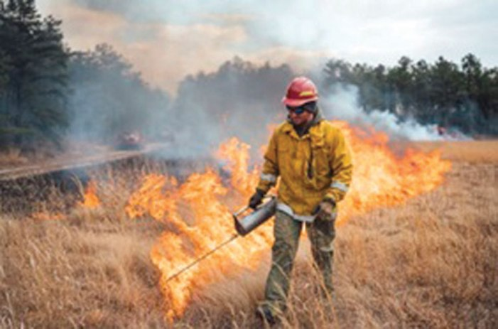 Forest fire prevention measures underway across NJ
