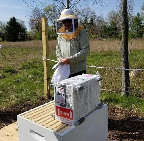 West Orange to celebrate National Pollinator Week with a beekeeping demonstration
