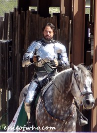 arizona renaissance festival march 11 2017 (18)