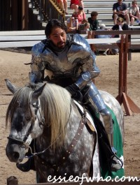 arizona renaissance festival march 11 2017 (20)