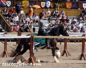 arizona renaissance festival march 11 2017 (31)
