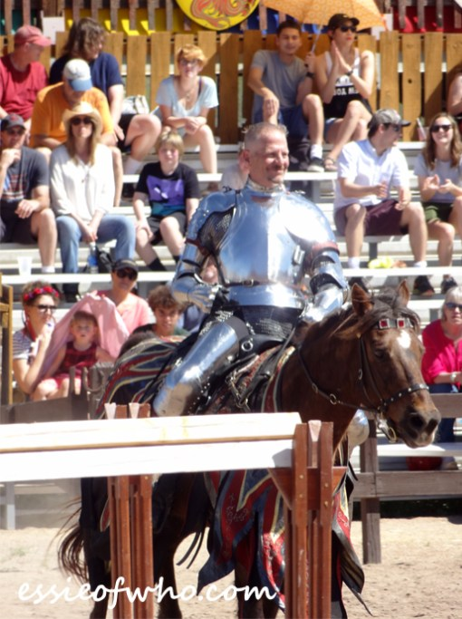 arizona renaissance festival march 11 2017 (33)