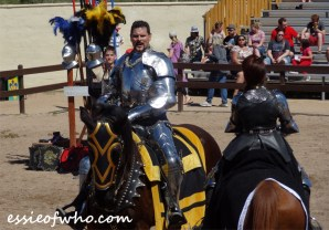 arizona renaissance festival march 11 2017 (41)