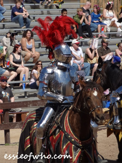 arizona renaissance festival march 11 2017 (45)