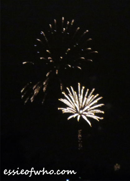 2017 4th of july firework (11)