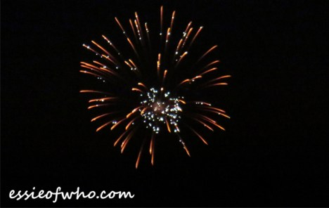 2017 4th of july firework (12)