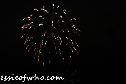 2017 4th of july firework (13)