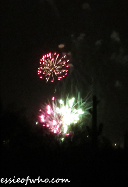2017 4th of july firework (22)